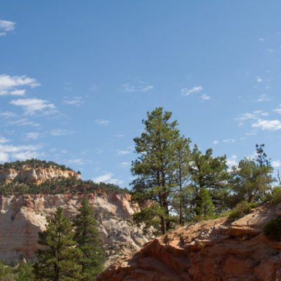 one of the only pics at zion i got with the SLR.  too much traffic to stop for the real good pics.