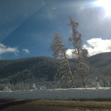 [gallery] Beautiful drive o
